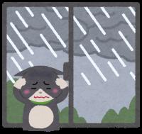 猫だって梅雨は不快!猫のために梅雨の対策をしてあげよう