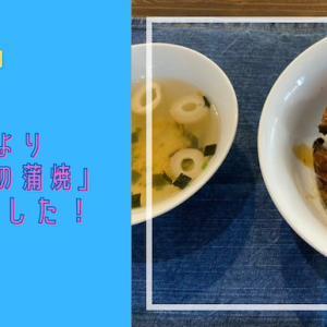 【ふるさと納税】鹿児島県東串良町より「うなぎの蒲焼」届きました!