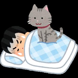 Why We Sleep: Ch. 11要約