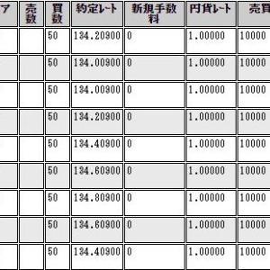 攻略ガイドブックプレゼント!2週間で100万円の利益!