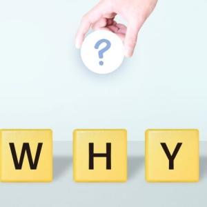 『褒め』が人材育成・組織マネジメントに及ぼす影響(6)