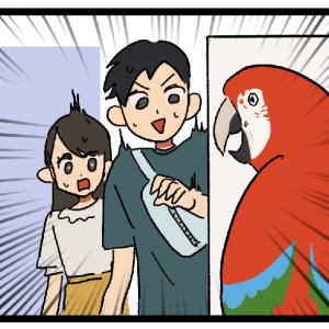 新規のお客さんの反応で何となくの鳥オタク度がわかる