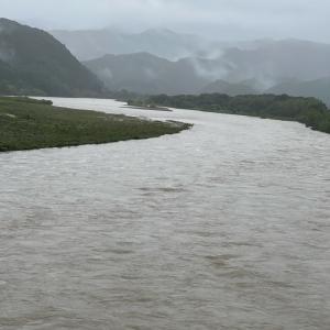 今日の大雨警報 in 徳島 川の水量増加もニャンズはいつも通り