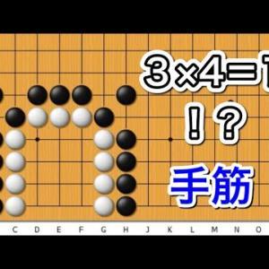 【囲碁】手筋講座~官子譜編~何か整地の時にできそう形編~ No512