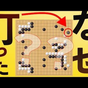 【囲碁】19路盤を打ち始めてすぐ頃の方に見てほしい動画!