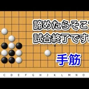 【囲碁】手筋講座~感動の手筋編~No577