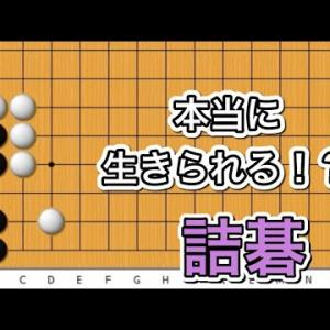 【囲碁】詰碁講座~有名な例の筋編~オンライン囲碁大会のビッグゲスト発表編〜No623