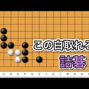 【囲碁】詰碁講座~官子譜編~基本詰碁の応用編~No629
