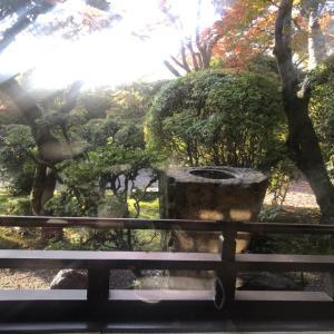京都嵐山 花のいえ 宿泊記