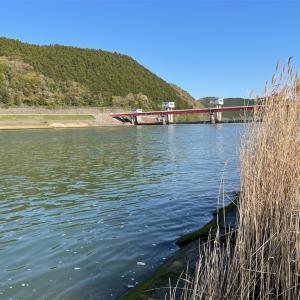 2021追波川⑩・11 GW前の状況とは?