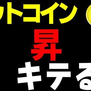 【ビットコイン&イーサリアム&リップル&ネム&エンジン】仮想通貨 ついに上昇来るか?!アルトも高騰中!!