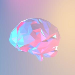 脳画像を学ぶにあたって必要なこと。「脳」を立体的にイメージしよう。
