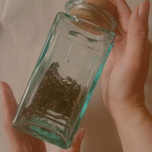 白茶を飲むと若返る!~美人のお茶~
