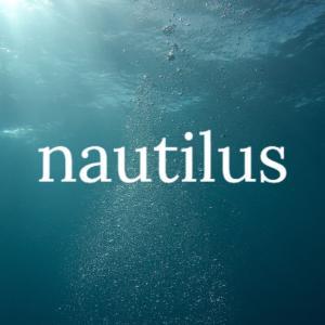 BASE2店舗目の深海専門ショップ「nautilus」の1か月目
