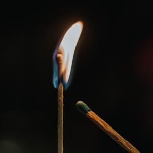 【書評】ネット炎上の研究を読んだ感想 SNSは危険?