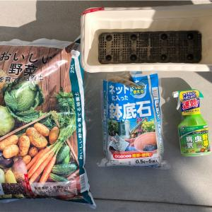【家庭菜園】〜初心者の挑戦〜