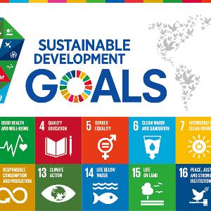 SDGs???