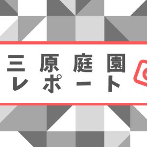 【長崎】三原庭園 世界一の庭園は眺めも最高で雲海も?新たな穴場デートスポット発掘!