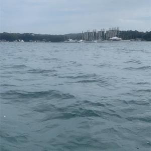 【釣行記・前編】2020年の釣行を振り返る⑦:2020.9.20 手漕ぎボート(三浦半島・小網代湾 油壷釣船組合)