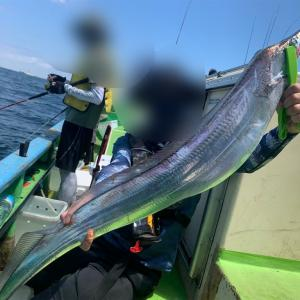 【釣行記】タチウオジギング釣行記(2021.7.31 金沢八景 太田屋)