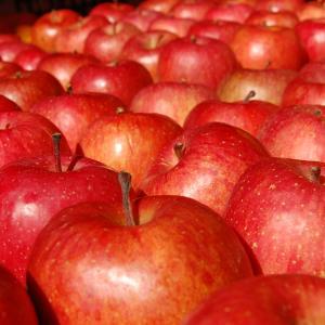 腸活リンゴ