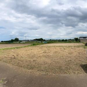 耕作放棄地をエゴな太陽光発電にするより 自然農の畑に