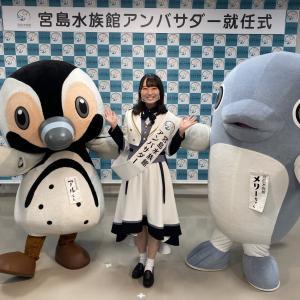 STU48 今村美月が宮島水族館のアンバサダーに就任