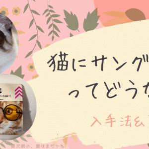 【ダイソー・セリア】猫にサングラスってどうなの?入手先から裏技まで【アプリでも】