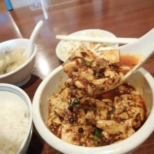 天富園の本格四川料理で痺れる麻婆豆腐を食す!関内駅近辺でのオススメ中華ランチ