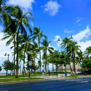 ハワイの気になるニュース「新型コロナウィルス感染が減少傾向」