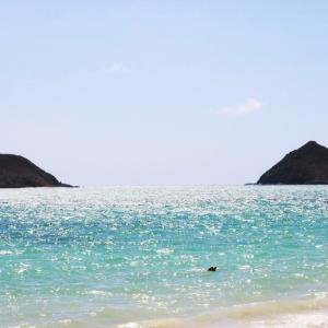 ハワイの気になるニュース「オアフ島の感染拡大防止策が延長」