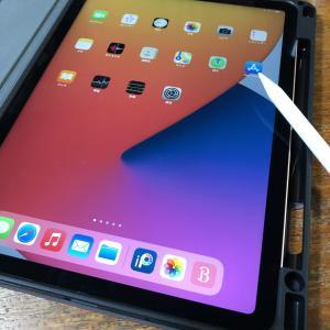 iPad Air(第4世代)~LINE ログインで失敗~