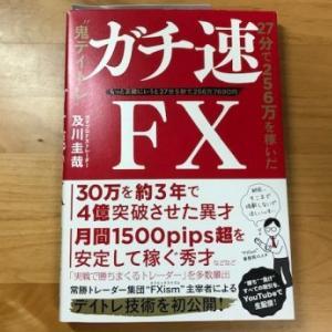 ガチ速FX 及川圭哉