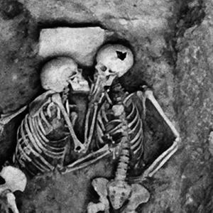 古代文明の謎!発掘されたミイラが語る、語られない物語