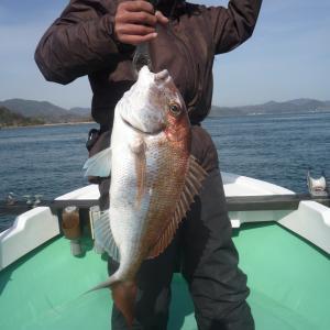 冬のタイラバ釣行、厳しくも大型真鯛をキャッチ