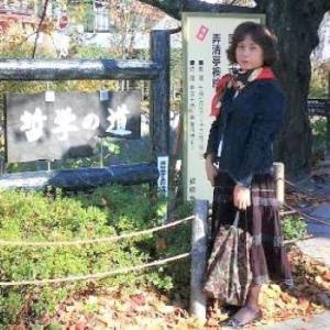 気まぐれカット (113) 哲学の道真如堂06/11KMSp