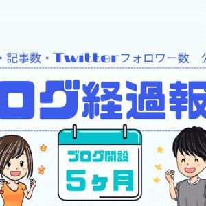 【ブログ経過報告(5ヵ月)】PV数・記事数・Twitterフォロワー数 一挙公開!!!!