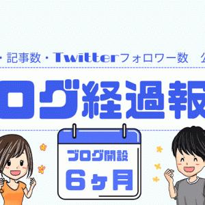 【ブログ経過報告(6ヵ月)】PV数・記事数・Twitterフォロワー数 一挙公開!!!!