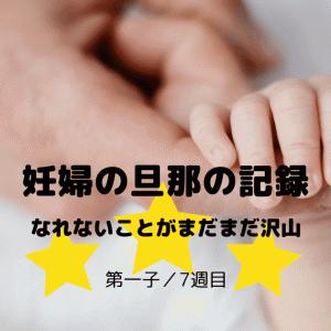 妊婦の旦那の記録 (第一子/7週目)