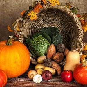 旬の野菜を、お手頃価格で簡単調理。家事時間を減らして豊かになろう!