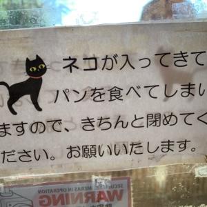 珍しい無人販売のパン屋に貼られていた猫注意の張り紙