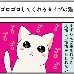 子猫の性格は生まれつき決まってる?ゴロゴロするのは〇〇〇かもしれない