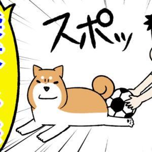 ツッコミ不在!柴犬と子供のやりとりが面白すぎる&おじゃまだら見参!