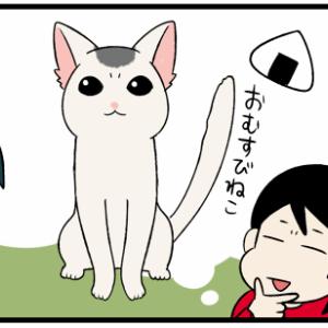 雑種猫ならではの楽しみ方!将来の模様を予想すると面白い