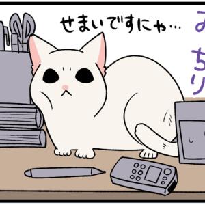 常に人の視界に入っていたい子猫がとったひどい行動とは…?