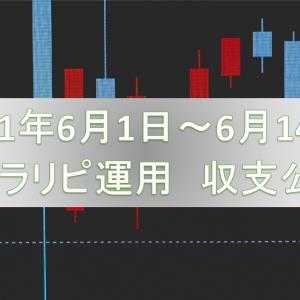 【FX自動売買の話】トラリピ編『2021年6/1~6/14 収支公開』って話