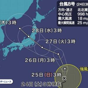 台風8号です