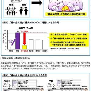 【武漢コロナ禍】麻黄湯が肺・血清中の IgA・IgG 抗体産生量を増強するらしい件