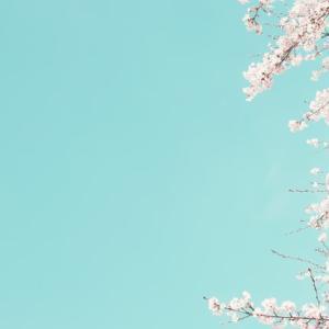 今年の桜、開花はいつ?