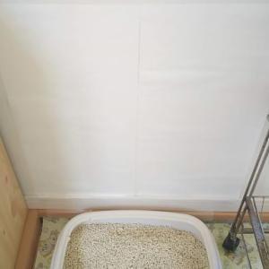 猫トイレ置き場のクロス汚れ防止にダイソーリメイクシート!